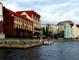 Российское общество урологов проведет школу в Калининграде 31 марта